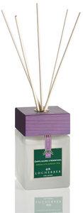 Absolute Green Tea Fragrance diffuser bamboo sticks 250ml ℮ - 8.45 fl.oz Locherber Home